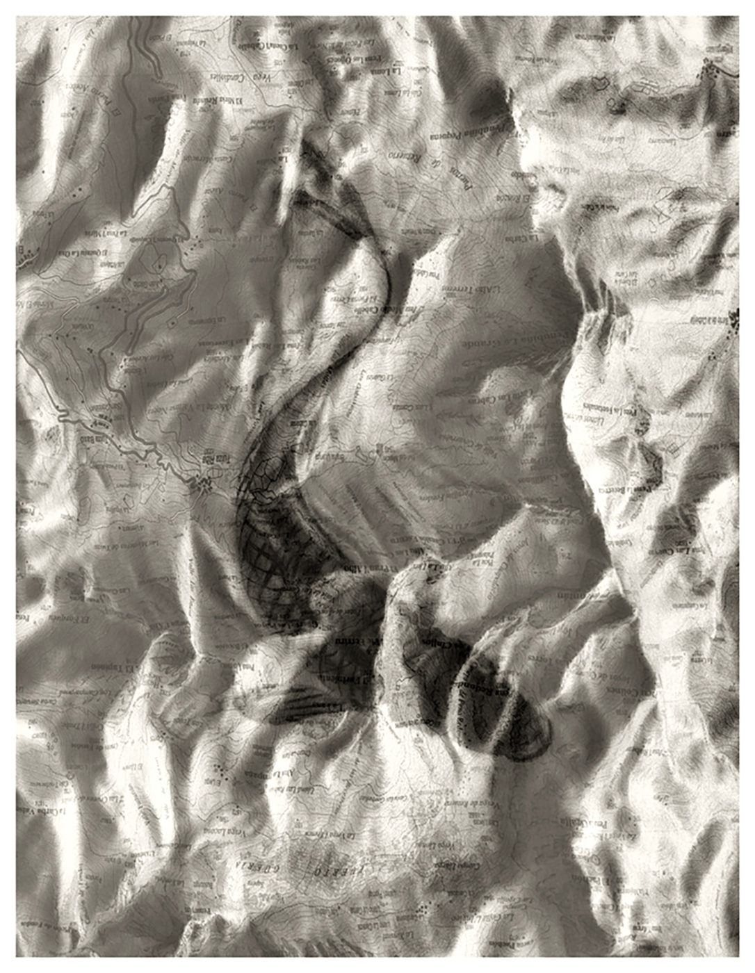 Chema Madoz Sin título, 2012 Fotografía blanco y negro sobre papel baritado, virado al sulfuro Galería Elvira González